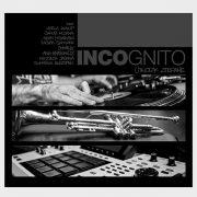 incognito_plyta2